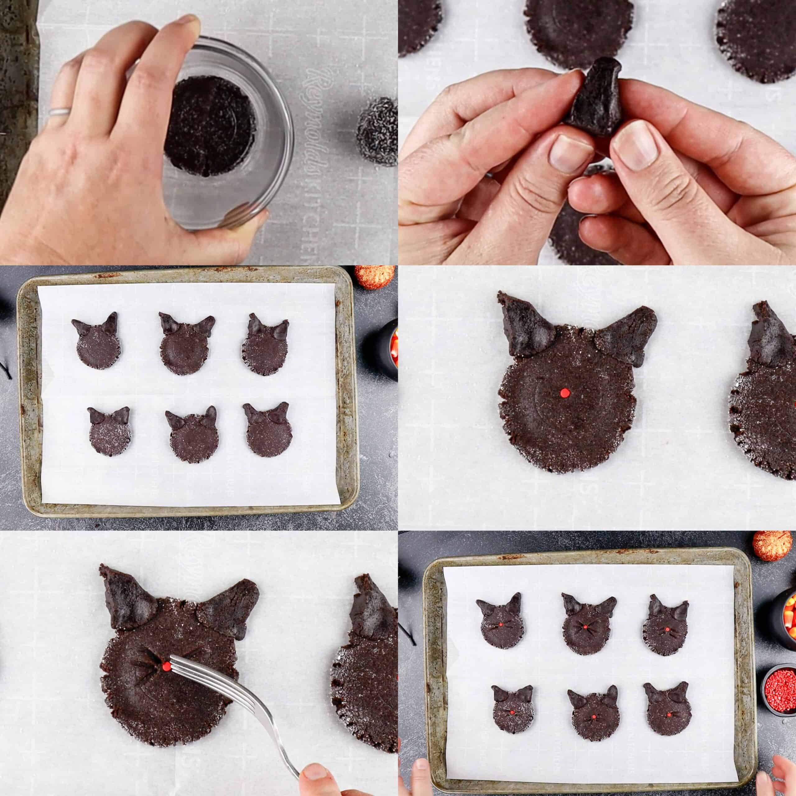 make the cookies look like cats process photos