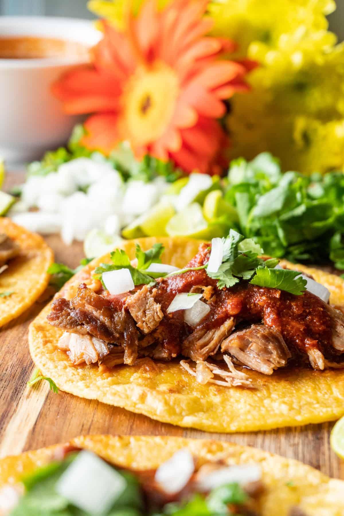 Carnita Taco Open faced