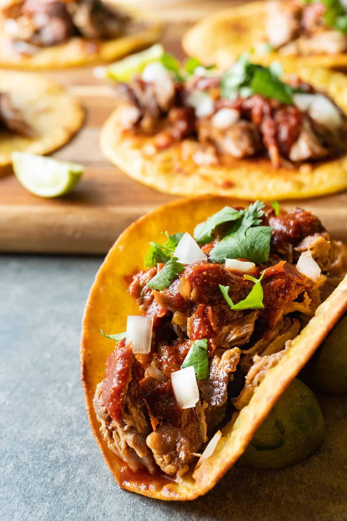 Carnita Taco Close Up