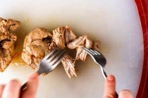 Shredding pork with forks