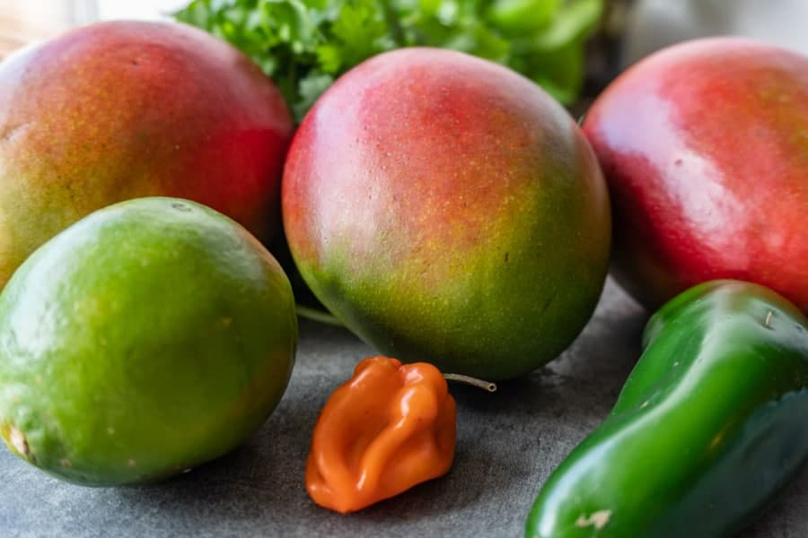 Easy Mango Salsa Recipe, A super easy, and super quick mango salsa recipe that will have your taste buds dancing! Top your favorite tacos or use chips! Either way this mango salsa recipe is what you need in your life! #atablefullofjoy #tacotable #tacotuesday #mangosalsa #mangopineapplesalsa #pineapplesalsa #salsa #cincodemayo