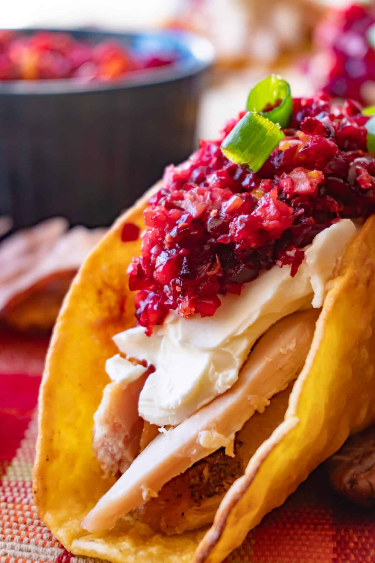Close up of Taco with turkey, cream cheese, cranberry relish and green onion