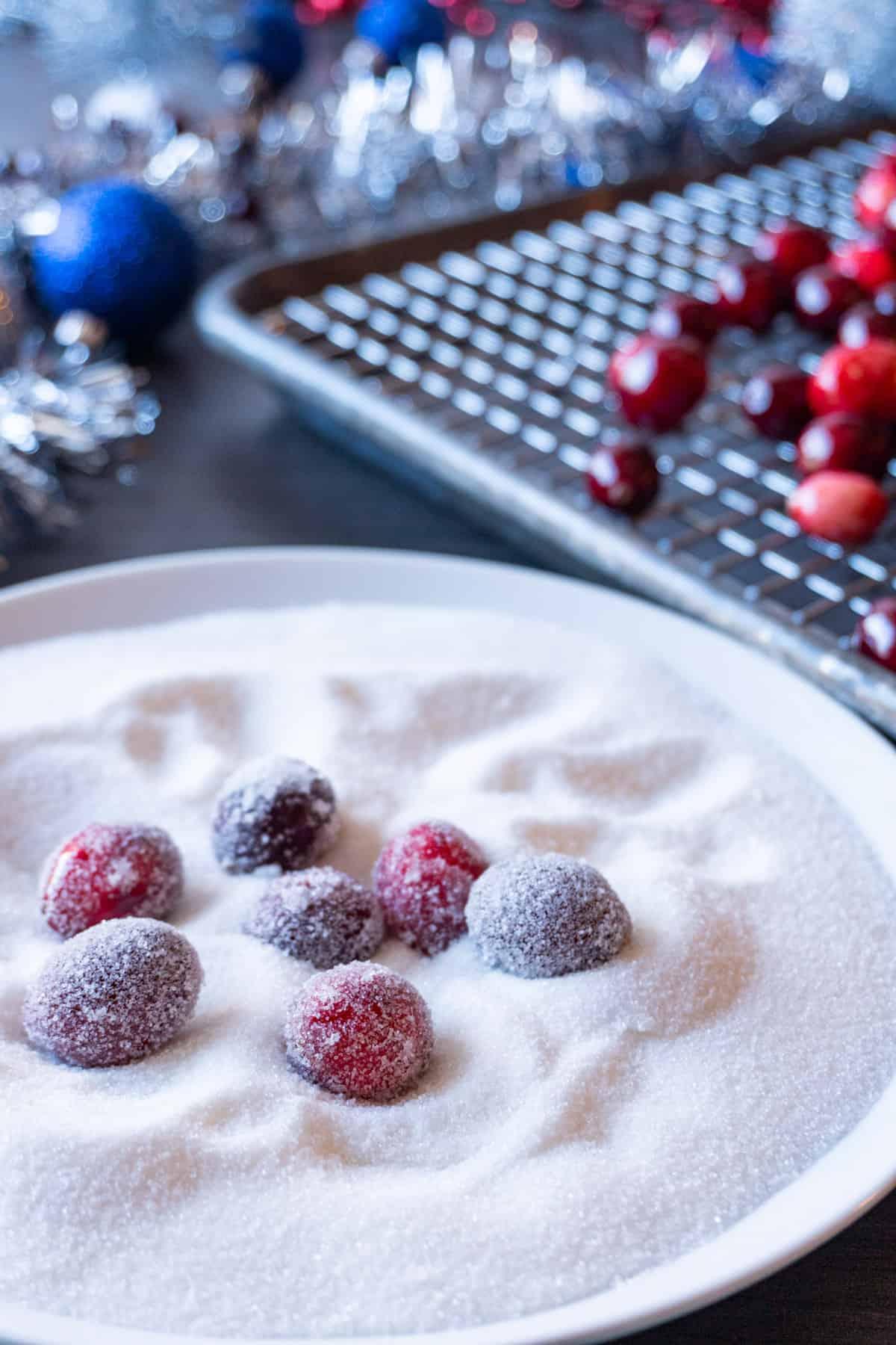 rolling cranberries in sugar