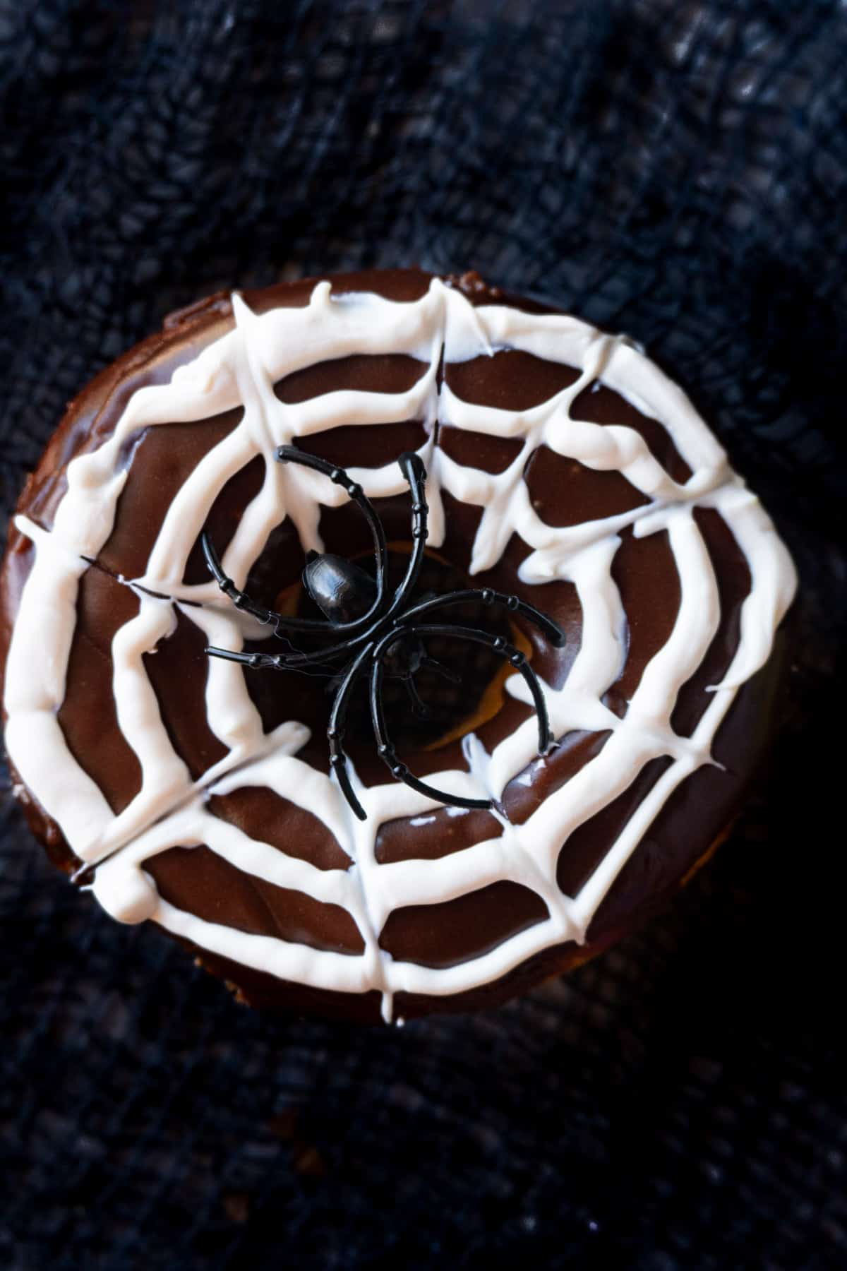 close up of spider web donut