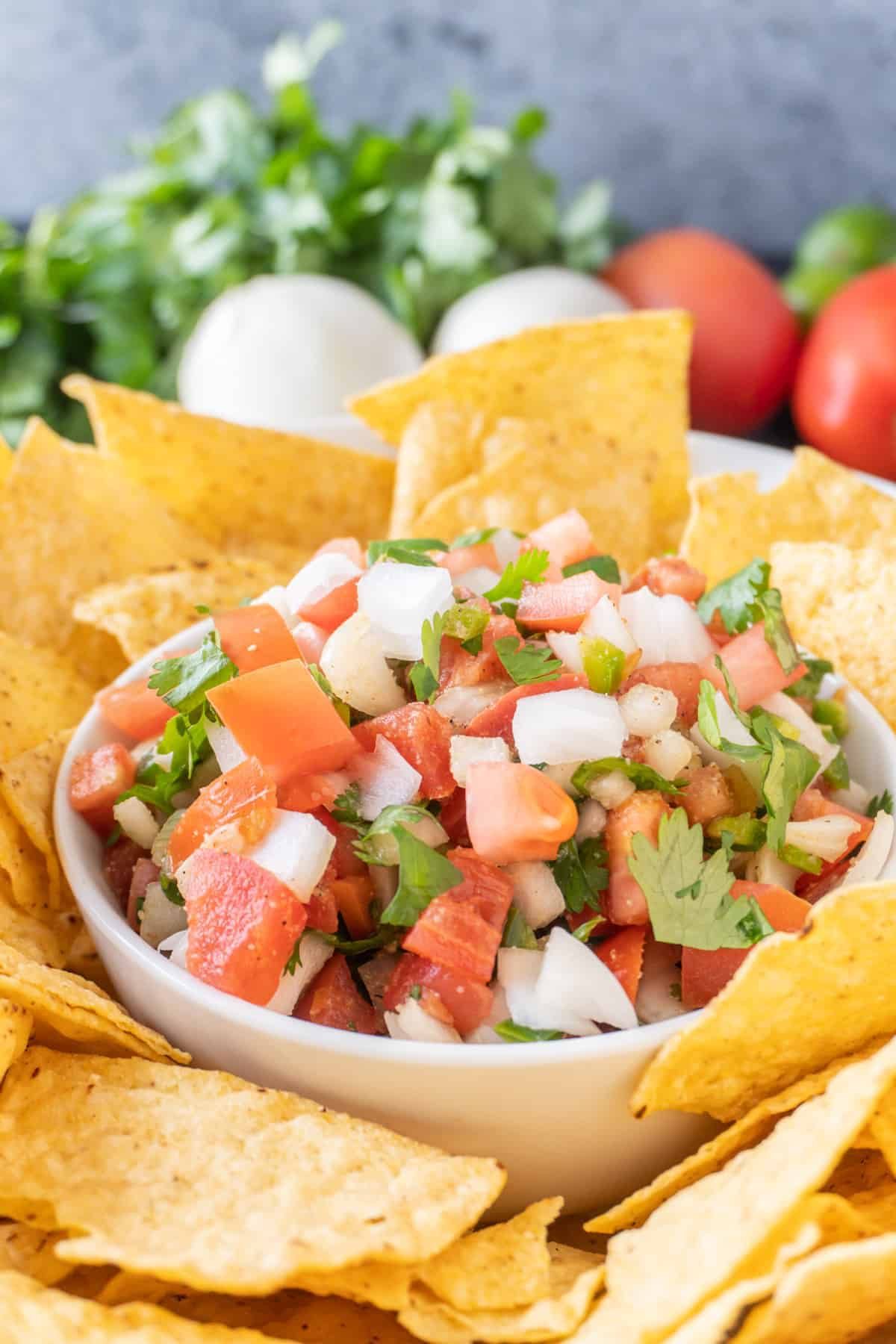 pico de gall in a bowl surrounded by tortilla chips