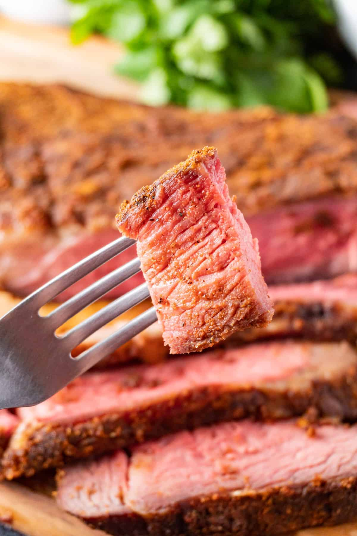Tri Tip piece on fork