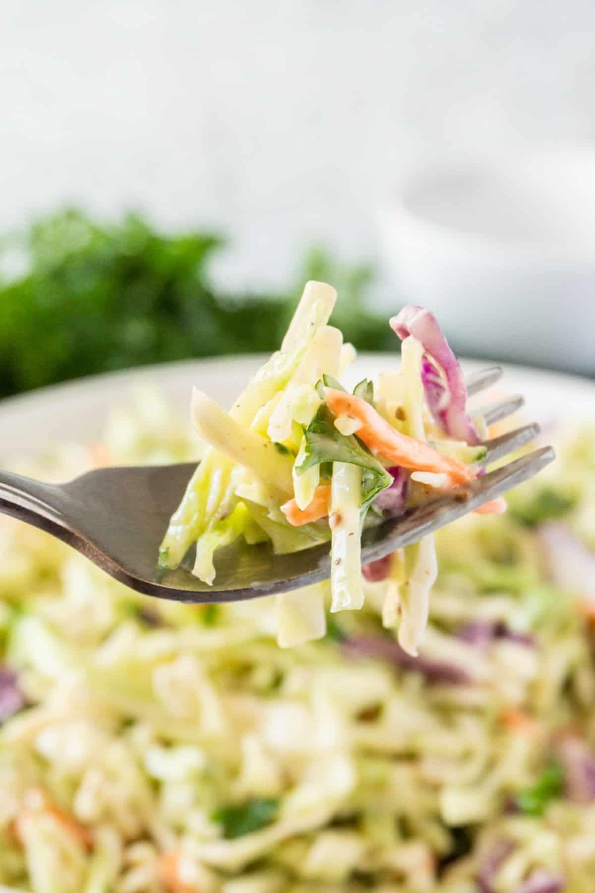 broccoli slaw on a fork
