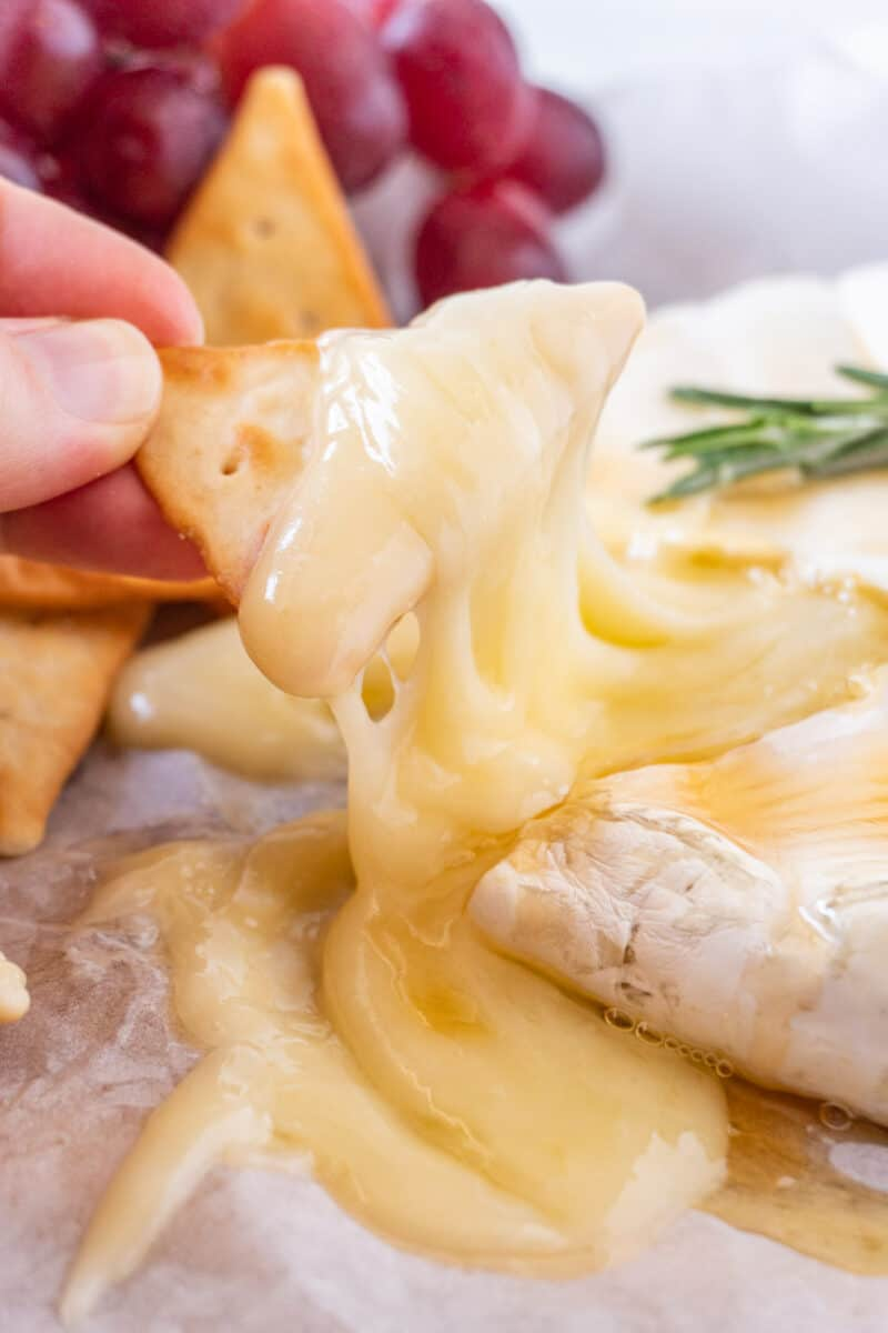 melted brie on cracker