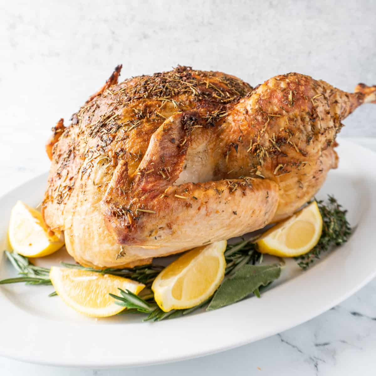 baked turkey on platter with lemon and sage leaves around it featured image