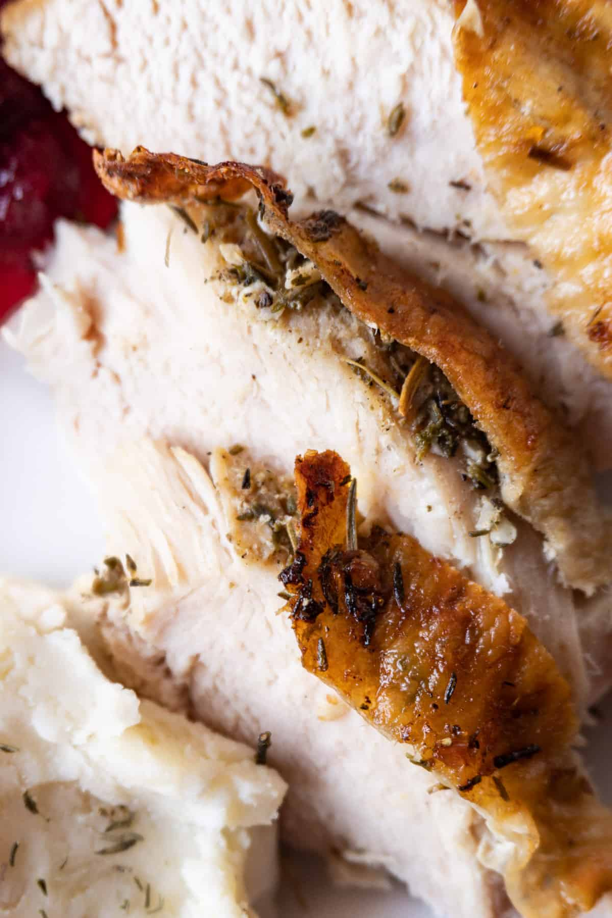 close up of turkey slices