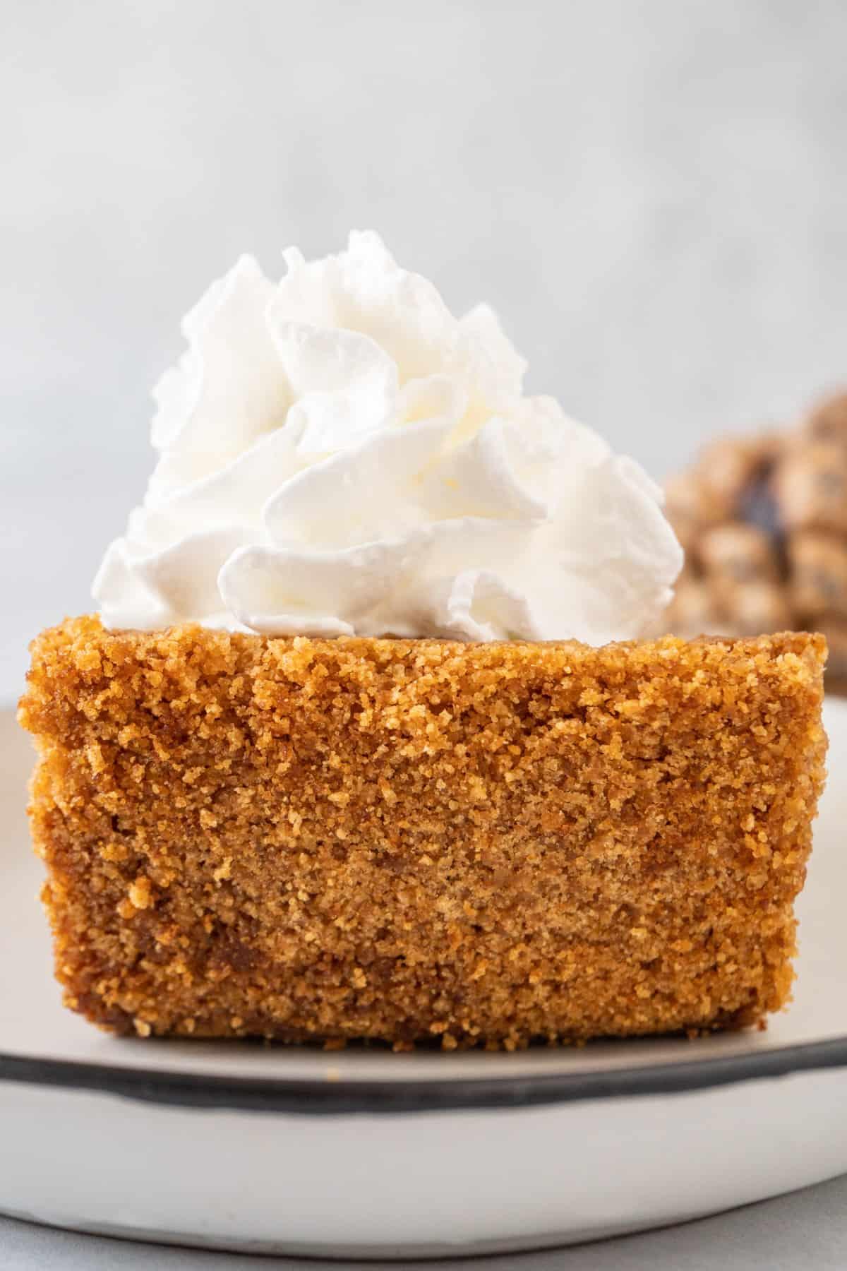 close up of golden graham cracker crust