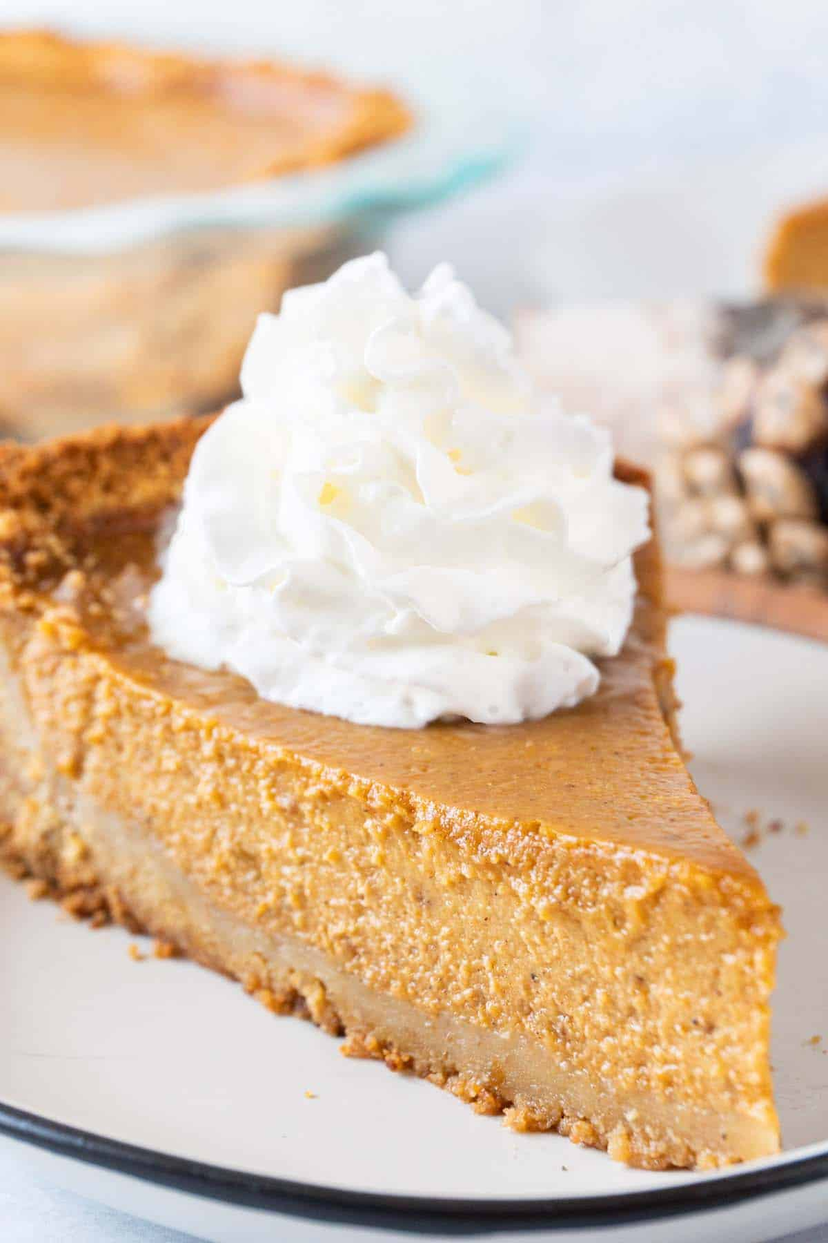 close up of slice of pie
